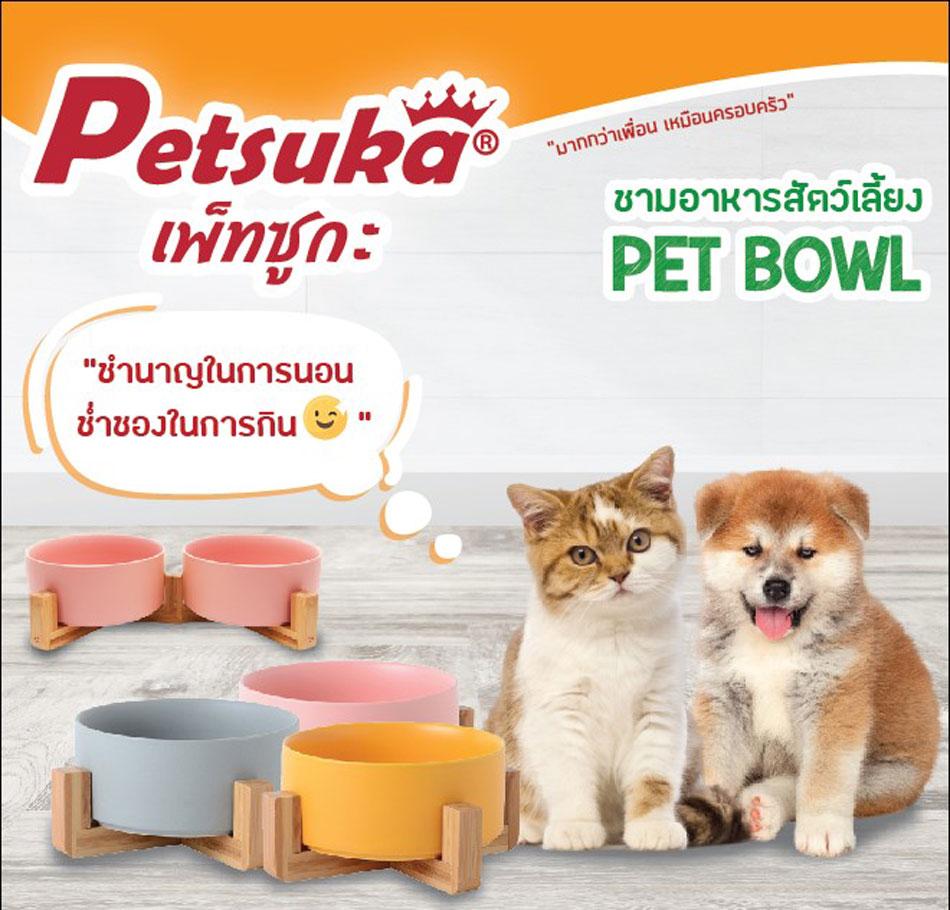 ชามเซรามิคสัตว์เลี้ยง Petsuka พร้อมฐานรองสไตล์ญี่ปุ่น สำหรับสุนัขและแมว สีเทา แบบคู่